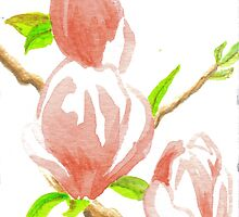 ACEO Three Magnolia Blossoms by robertsloan2