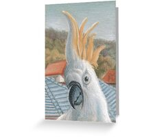 ACEO Cockatoo Greeting Card