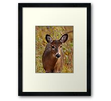 Sunshine in my eyes (unframed) Framed Print