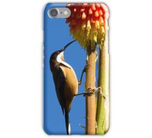 the honey eater - uz iPhone Case/Skin