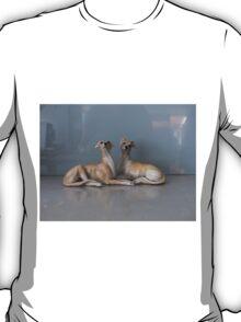 China Dogs T-Shirt