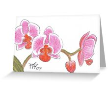 ACEO Orchid Greeting Card