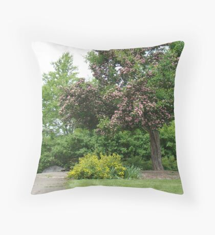 blossoms on a tree Throw Pillow