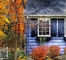Little Blue House by Mike  Savad
