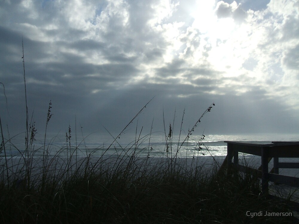 Silver lights and sea oats by Cyndi Jamerson