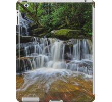 Somersby Falls at Work iPad Case/Skin
