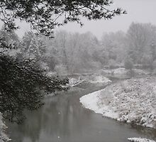 winter river #1 by anita evans