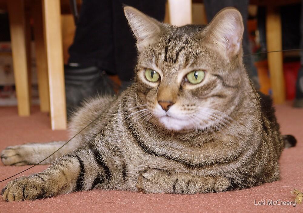 My Cat Tigger by Lori McCreery