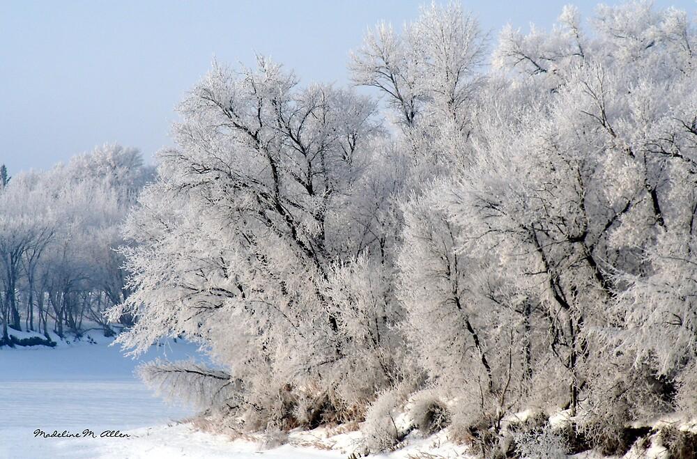 Frosty Bend by Madeline M  Allen