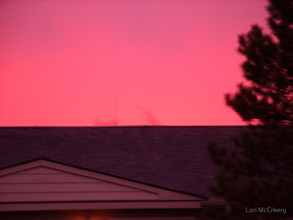 Pink Sky by Lori McCreery
