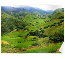 The Green Valley - Sa Pa, Vietnam. Poster