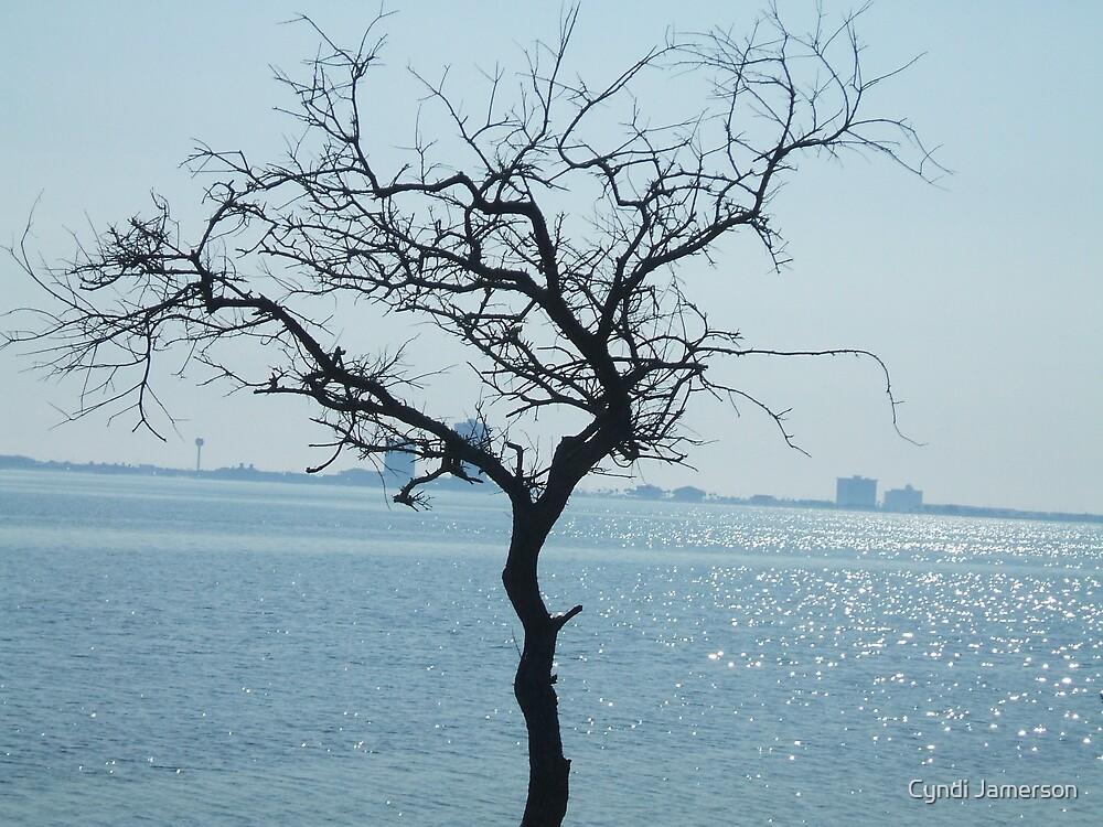 lonesome tree by Cyndi Jamerson