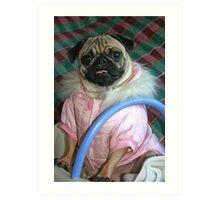 Pug In A Buggy! Art Print