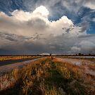 Road to Thunderhead by David Haworth