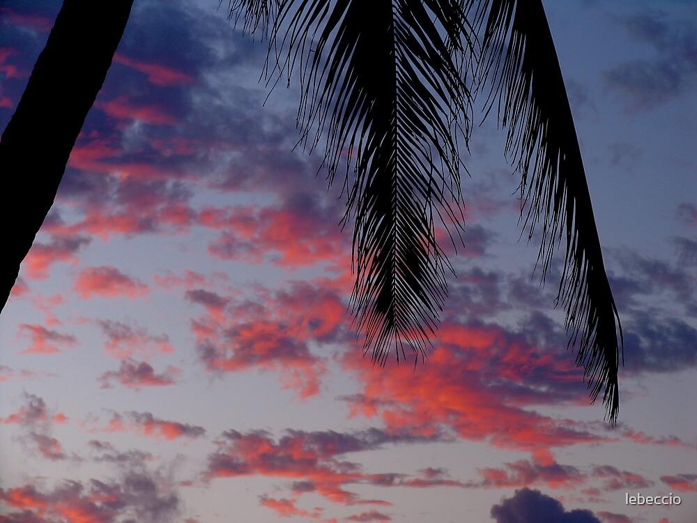 North Shore of Oahu, Hawaii by lebeccio
