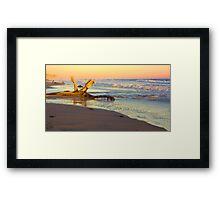 Drift Wood, Goleta, California Framed Print