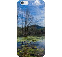 Lake Maroon iPhone Case/Skin