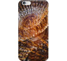 Sabellid worm iPhone Case/Skin