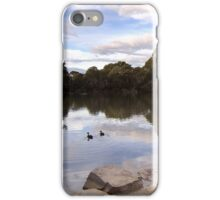 Two ducks in the evening sun iPhone Case/Skin