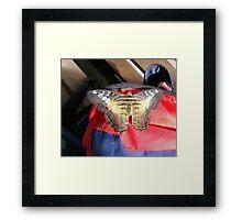 Hitchhiker II Framed Print