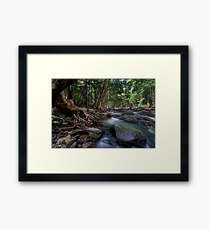 Lord of the Rings River Framed Print