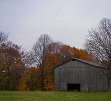 tobacco barn, front by budrfli