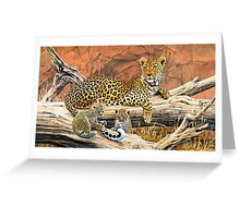Leopard and cubs resting Greeting Card