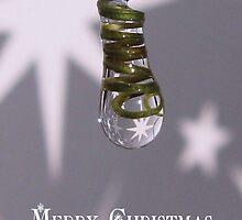Merry christmas again. by Sara Wiggins