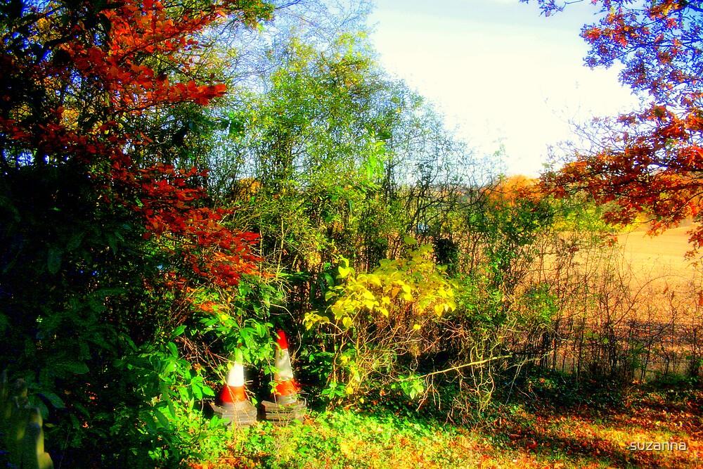 Garden Cone! by suzanna