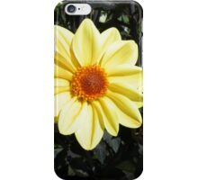 Sunshine flower iPhone Case/Skin
