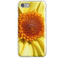 Intricacy of nature iPhone Case/Skin