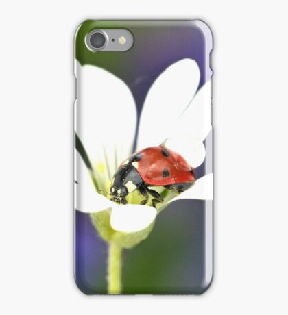 Ladybird on White Flower iPhone Case/Skin