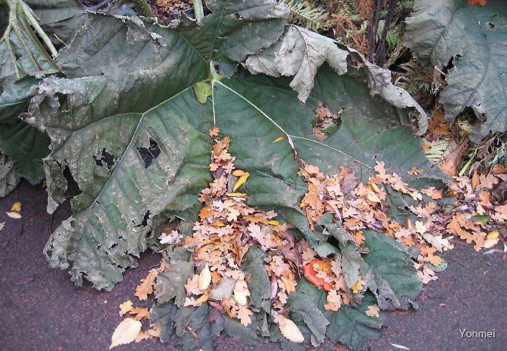 Autumn leaf, 1 by Yonmei