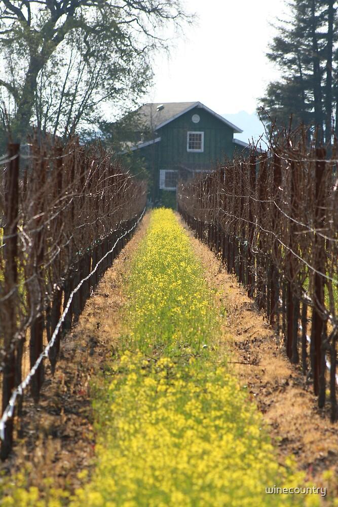 Green Barn by winecountry