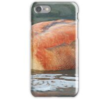 A Long way from Home iPhone Case/Skin