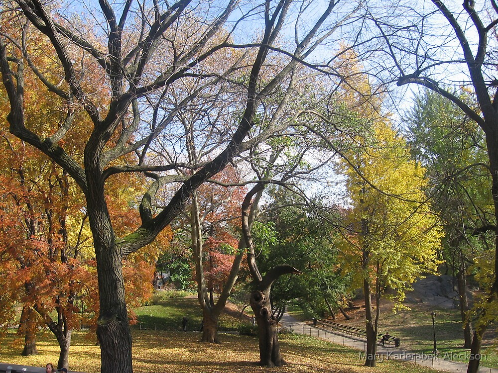 Central Park in the Fall by Mary Kaderabek-Aleckson