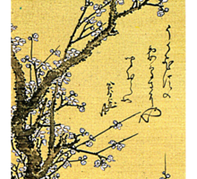 'Flowering Plum' by Katsushika Hokusai (Reproduction) Sticker