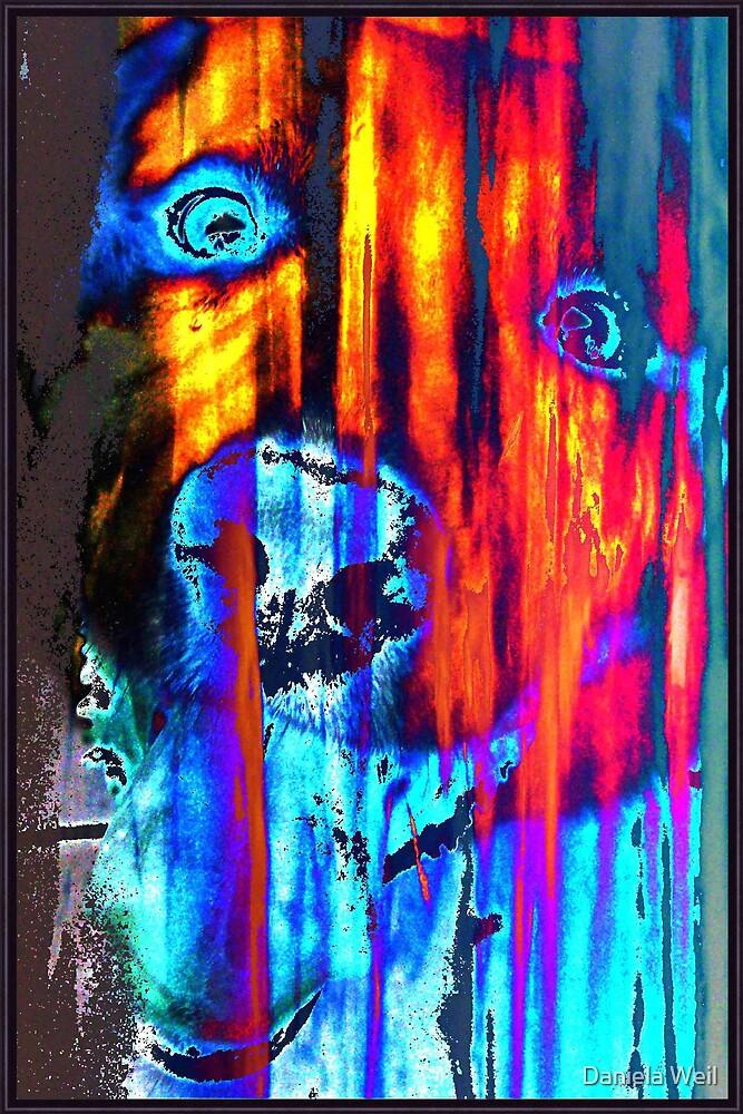 In the Shadows  by Daniela Weil