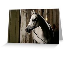 Nefisa in the Barn Greeting Card