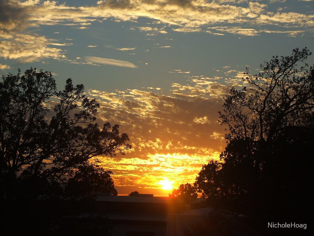 The Sky on Fire by NicholeHoag