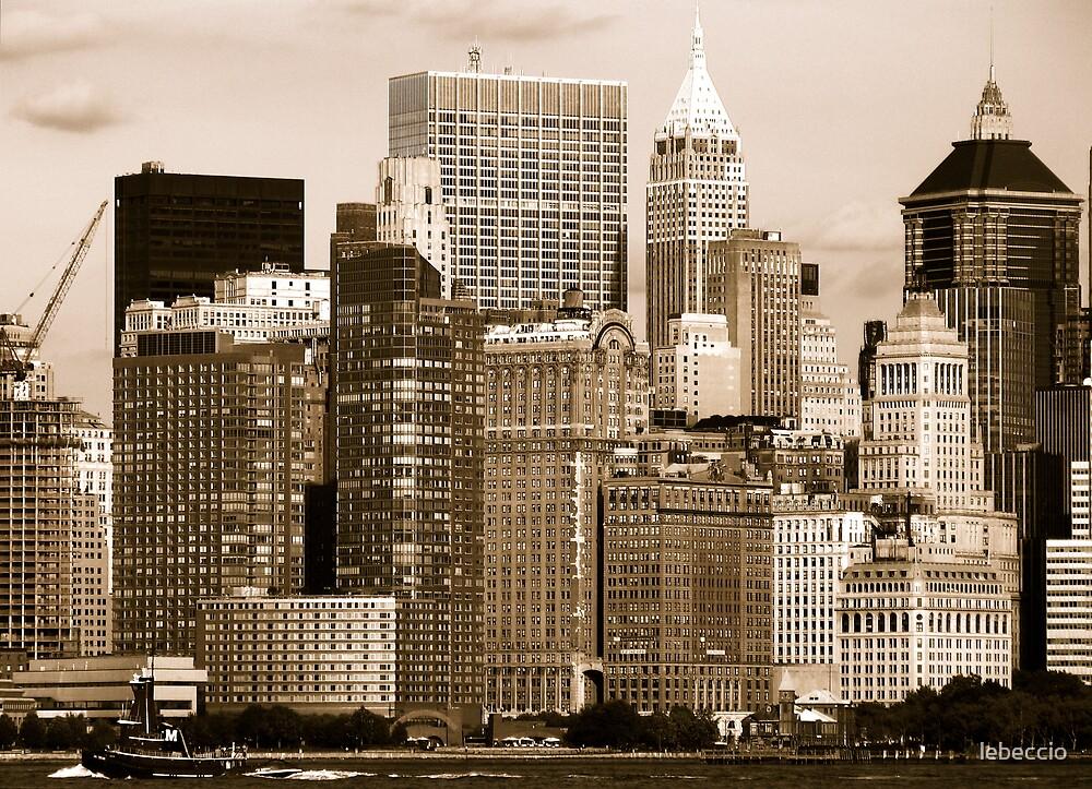Downtown NY by lebeccio