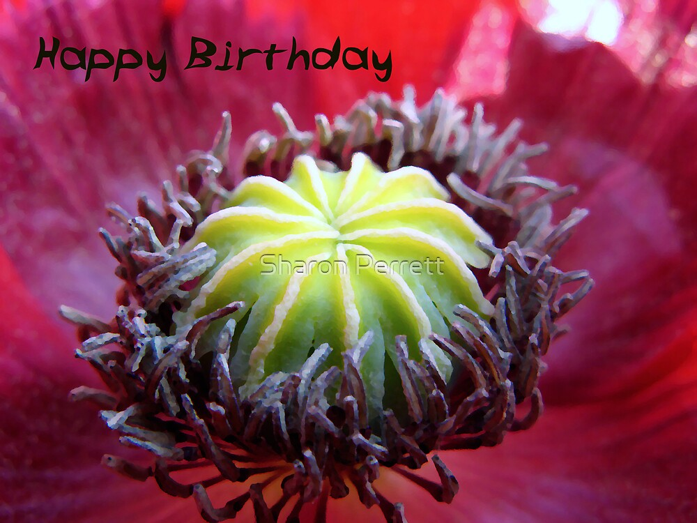Happy Birthday by Sharon Perrett
