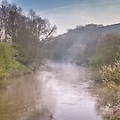 The River Teme, Knightwick, Worcester England by Cliff Williams