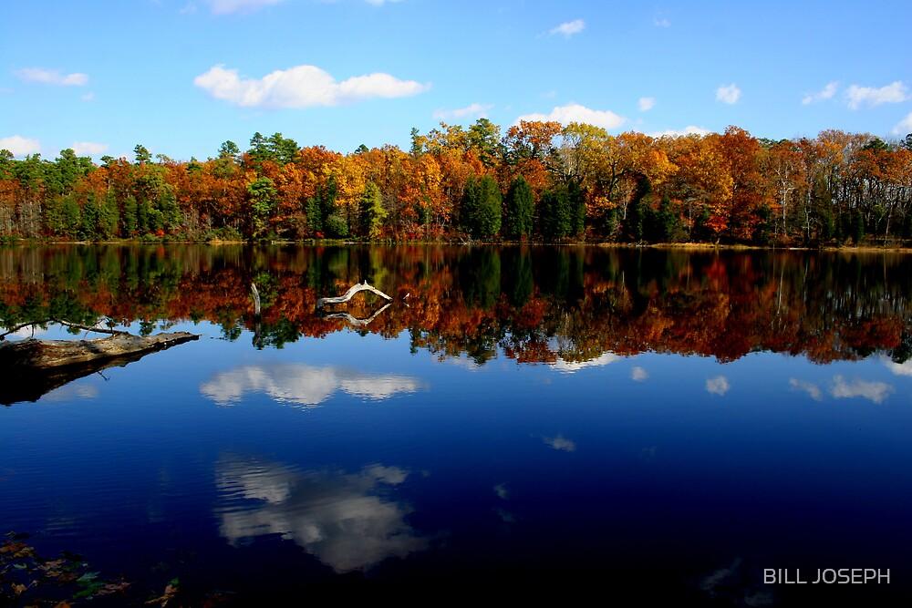BATSTO LAKE , NJ by BILL JOSEPH