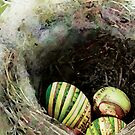 Nest Eggs by jenfinger77