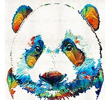 Colorful Panda Bear Art By Sharon Cummings Photographic Print