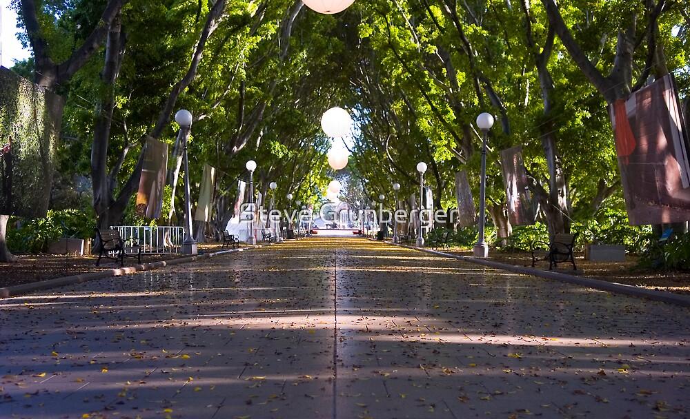 Hyde Park Sydney by Steve Grunberger