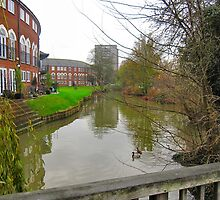 RIVERSIDE PROPERTY. by ronsaunders47