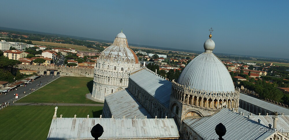 View from The Leaning Tower of Pisa by Gino Iori