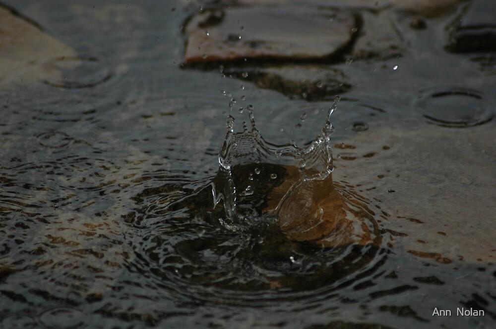 Drop of rain by Ann  Nolan